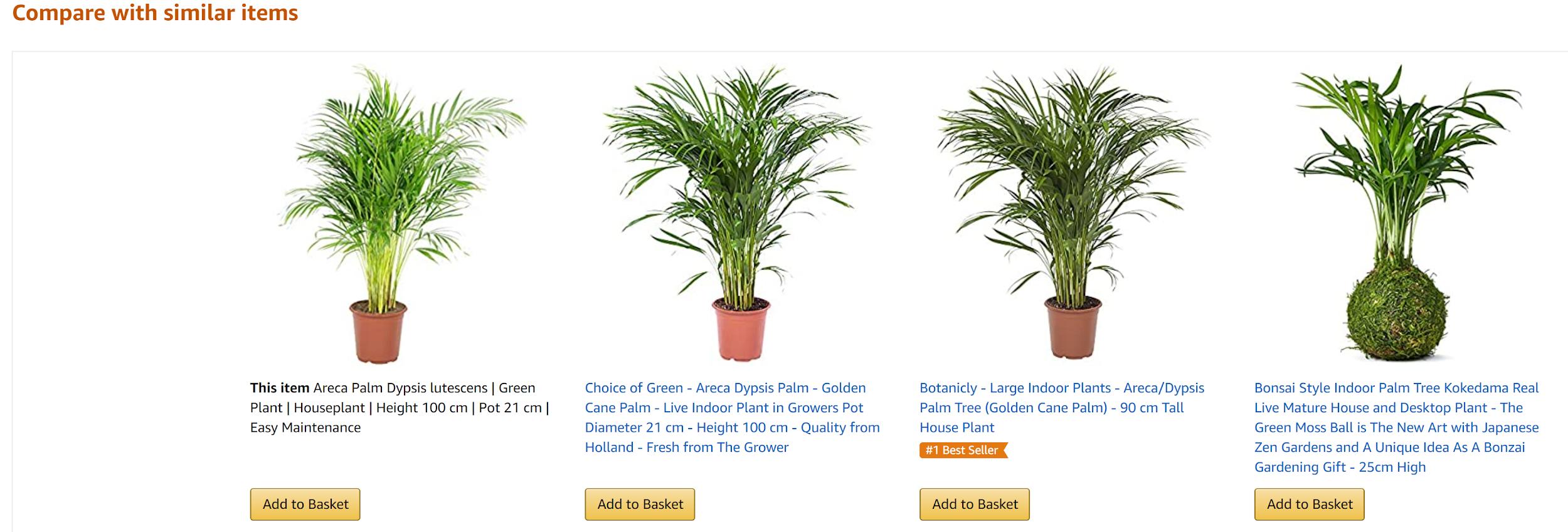Amazon plants